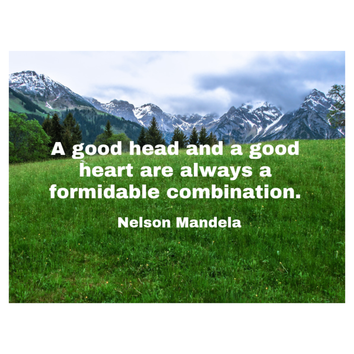 Quote from Nelson Mandela