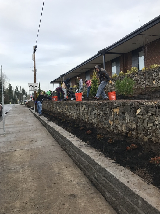 Ridgefield students working on landscaping