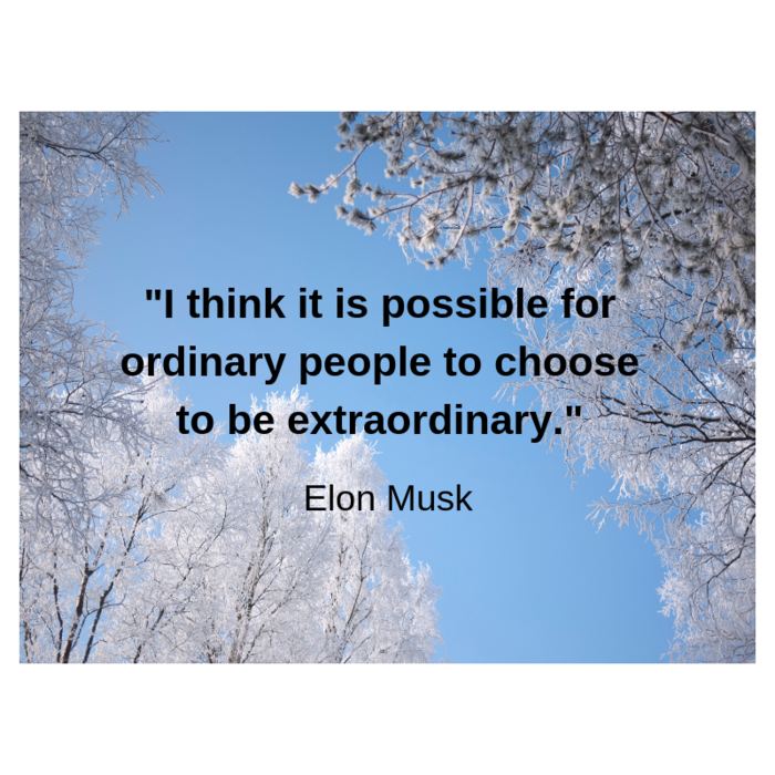 Quote of the Week - Elon Musk