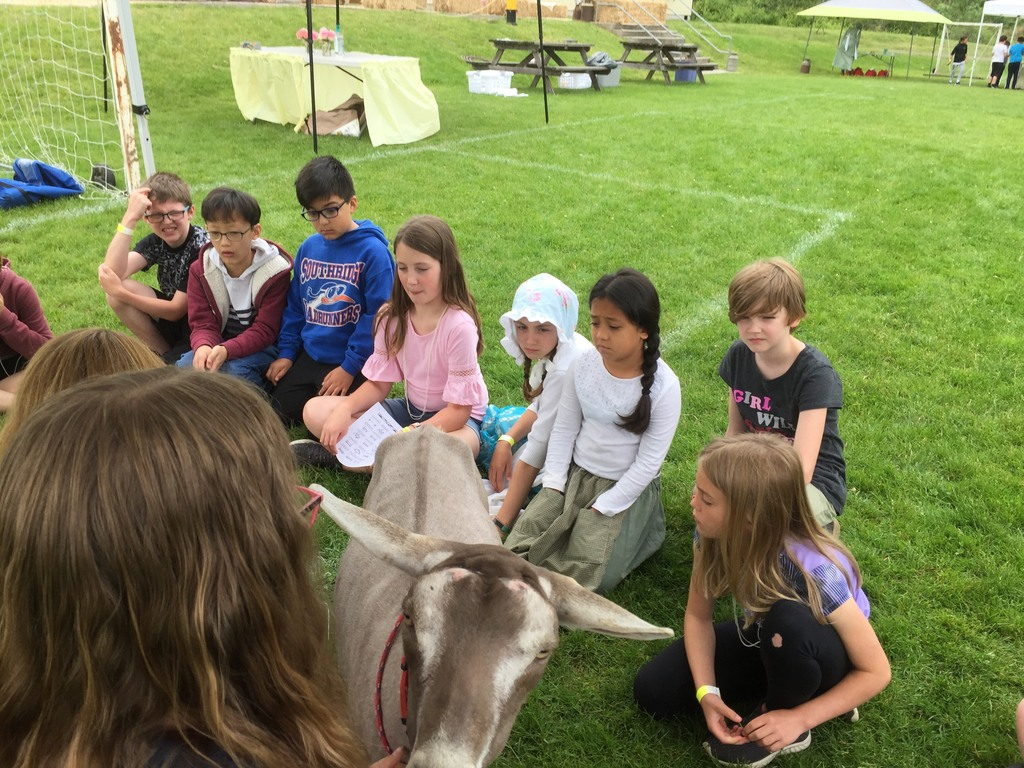 Students learned about milking a goat.