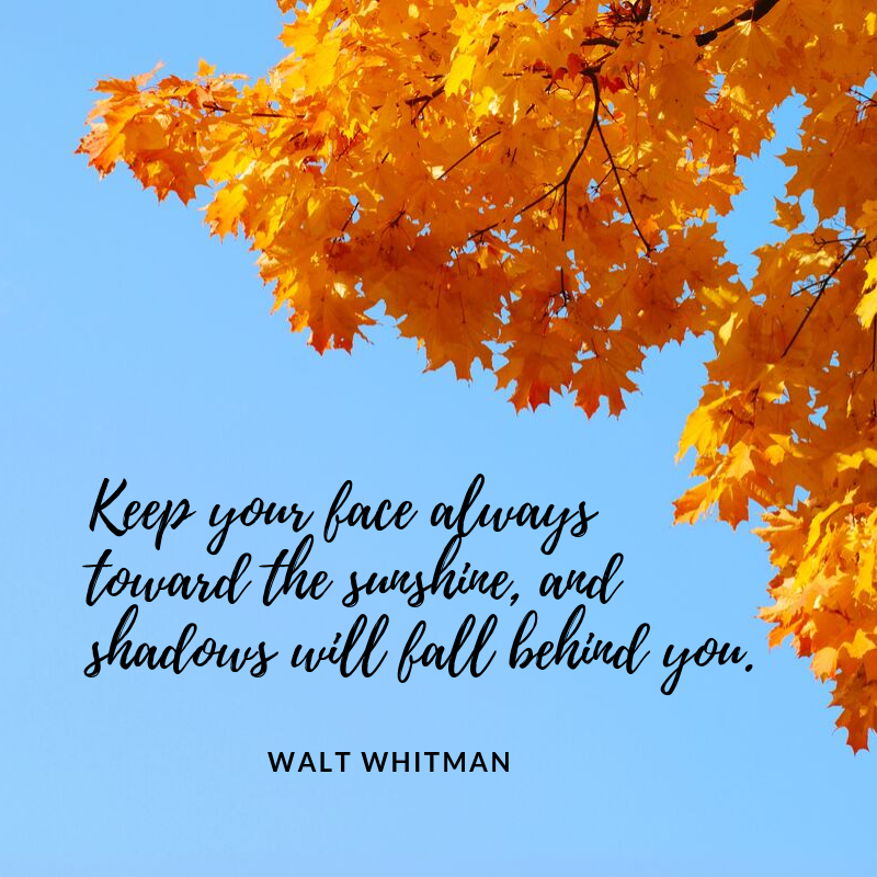 Quote from Walt Whitman