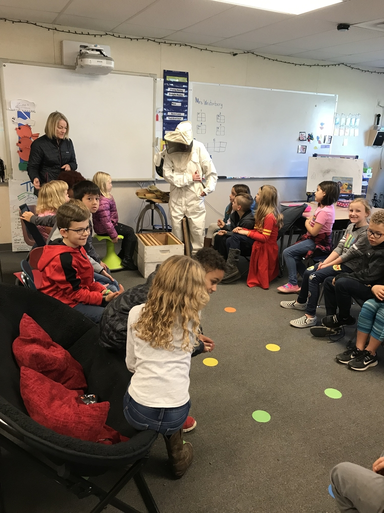 Beekeeper teaching about bees.